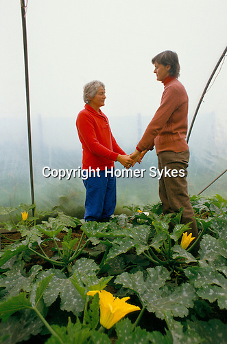 The Findhorn Community Foundation Moray Scotland members of the community pray  amongst vegetables in a green house 1970s New Age Community.
