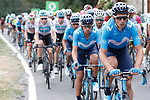 The peloton led by Movistar Team give chase during Stage 11, the longest of this year's race, of the La Vuelta 2018, running 207.8km from Mombuey to Ribeira Sacra. Luintra, Spain. 5th September 2018.<br /> Picture: Unipublic/Photogomezsport | Cyclefile<br /> <br /> <br /> All photos usage must carry mandatory copyright credit (&copy; Cyclefile | Unipublic/Photogomezsport)