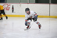 Mite GP Jr Bears B vs GS Wild Mite Minors