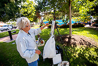 NWA Democrat-Gazette/JASON IVESTER <br /> Kay Pickett of Fayetteville works on her art piece on Wednesday, Sept. 16, 2015, on the Bentonville square. Pickett was on the square with other members of the Plein Air Painters of the Ozarks (PAPO) which meets weekly throughout the area.