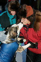 "Thursday  March 15, 2007   ---- Nome, Alaska.   Jeannette Willis, mother-in-law of Silvia Willis gets a kiss from Silvia's dog ""Clarke"" shorlty after Silvia crossed the finish line in Nome in 27th place."