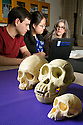 undergraduates Ben Schwartz and Amalia Cong discuss their work with primate tooth enamel with evolutionary anthropologist Christine Wall in Wall's lab in Biological Sciences Building