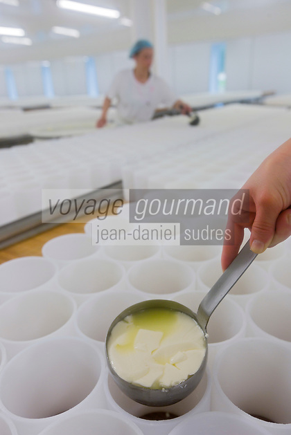 France, Calvados (14), Pays d'Auge, Saint-Loup-de-Fribois, Fromagerie du Domaine de Saint Loup, Camembert au lait cru moulé à la louche de la fromagerie du village, moulage manuel à la louche // France, Calvados, Pays d'Auge, Saint Loup de Fribois, raw milk camembert to cast the ladle of the cheese of the village, the manual casting ladle - Cheesery:  Domaine de Saint Loup