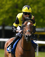 Motivate Me ridden by Jack Mitchell goes down to the start  of The Smith & Williamson Fillies' Novice Stakes (Div 1) during Afternoon Racing at Salisbury Racecourse on 16th May 2019