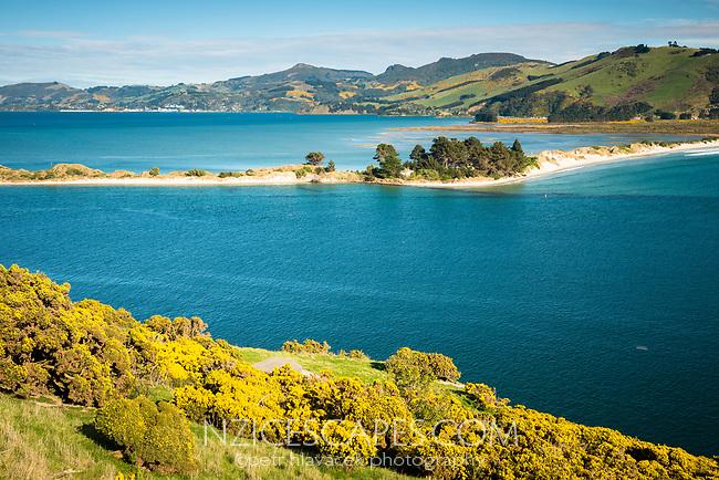 Entrance into Otago Harbour at Taiaroa Head on Otago Peninsula with sand spit, Coastal Otago, East Coast, New Zealand