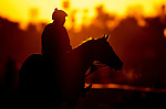 OCT 29: Scenes from Breeders Cup at Santa Anita Park in Arcadia, California on Oct 29, 2019. Evers/Eclipse Sportswire/Breeders' Cup