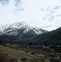 Pine forests dusted with snow cover the lower slopes of a range of snow-capped mountains