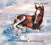 GIORDANO, REALISTIC ANIMALS, REALISTISCHE TIERE, ANIMALES REALISTICOS, paintings+++++,USGI2432M1,#A# horses, foals,