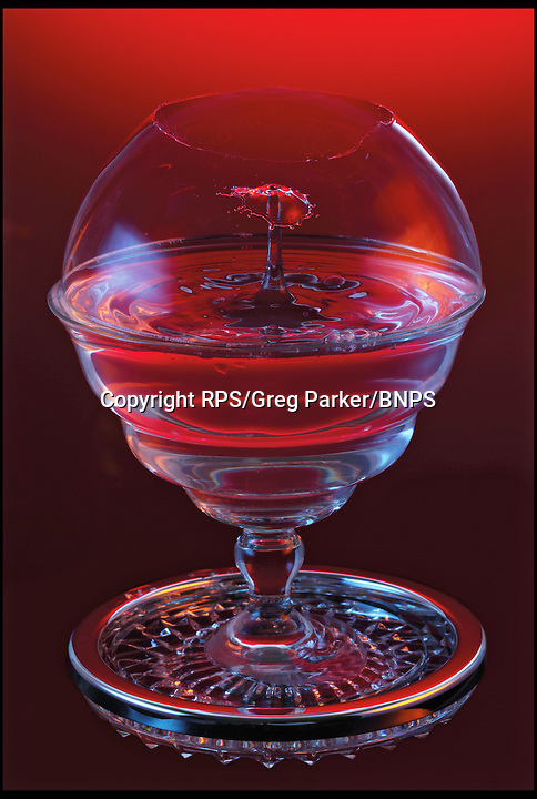 BNPS.co.uk (01202) 558833<br /> Picture: RPS/Greg Parker<br /> <br /> **please use full byline/single use only**<br /> <br /> High-speed flash image showing the collision of two water droplets beneath a bursting soap bubble by Greg Parker, Hampshire. The two droplets fell at slightly different times. The first broke through the top of the soap bubble and hit the pool of water beneath. As the water from this impact reflected upward, it was hit by the second droplet. The image was captured using a Canon 5D Mark II SLR camera and a xenon flash unit with an exposure time of 9 microseconds.<br /> <br /> Stunning photographs from the prestigious Royal Photographic Society's latest exhibition prove that science and beauty can co-exist. There 100 sensational images come from various disciplines of science and highlight how important photography is for academics. Photography plays a crucial role in medicine, forensic science, engineering, archaeology, oceanography, natural history and many more areas. The International Images for Science exhibition launches at the Great North Museum in Hancock, Newcastle, tomorrow (Sat), and showcases works from 54 scientists from around the world.