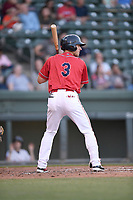 Left fielder Jordan Wren (3) of the Greenville Drive, playing as the Energia in MiLB's Copa de la Diversion, bats in a game against the Augusta GreenJackets on Wednesday, April 10, 2019, at Fluor Field at the West End in Greenville, South Carolina. Augusta won, 9-8. (Tom Priddy/Four Seam Images)