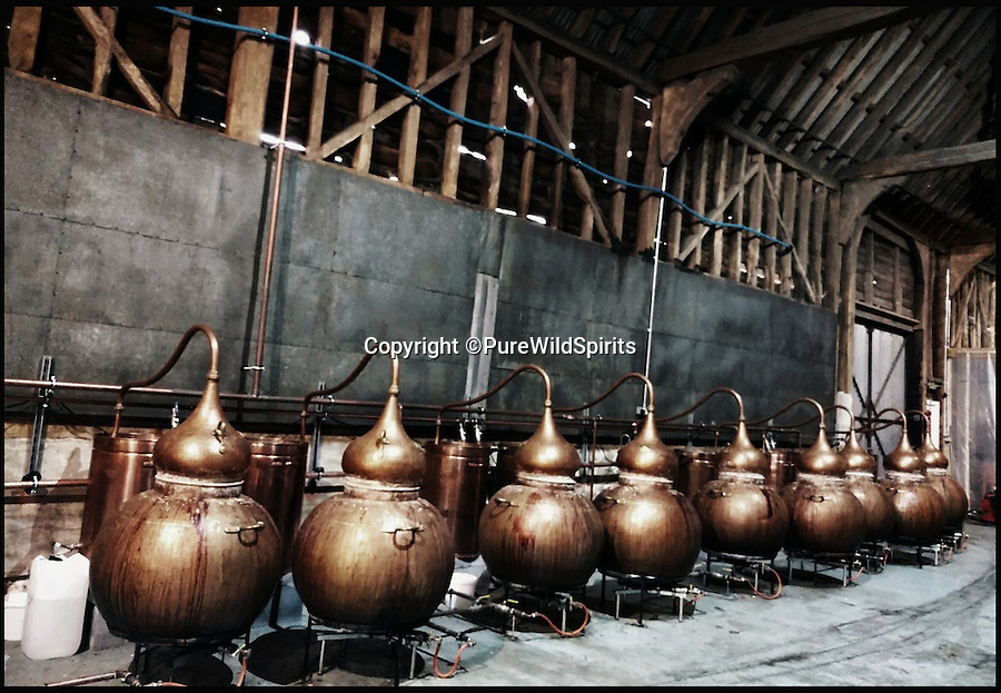 BNPS.co.uk (01202 558833)<br /> Pic: PureWildSpirits/BNPS<br /> <br /> The distillery.<br /> <br /> A British soft drinks guru is branching out – by launching the world's first spirit made from sap extracted from birch trees.<br /> <br /> David Wallwork has spent years working in the soft drinks business but came up with the wacky idea for the unusual tipple after birch water became a foodie trend.<br /> <br /> The sap is tapped from birch forests in northern Europe in springtime then brought to the UK where it is fermented and distilled into a clear spirit.