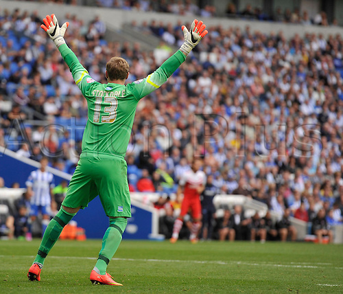 30.08.2014.  Brighton, England. Sky Bet Championship. Brighton and Hove Albion versus Charlton Athletic. Brighton's David Stockdale