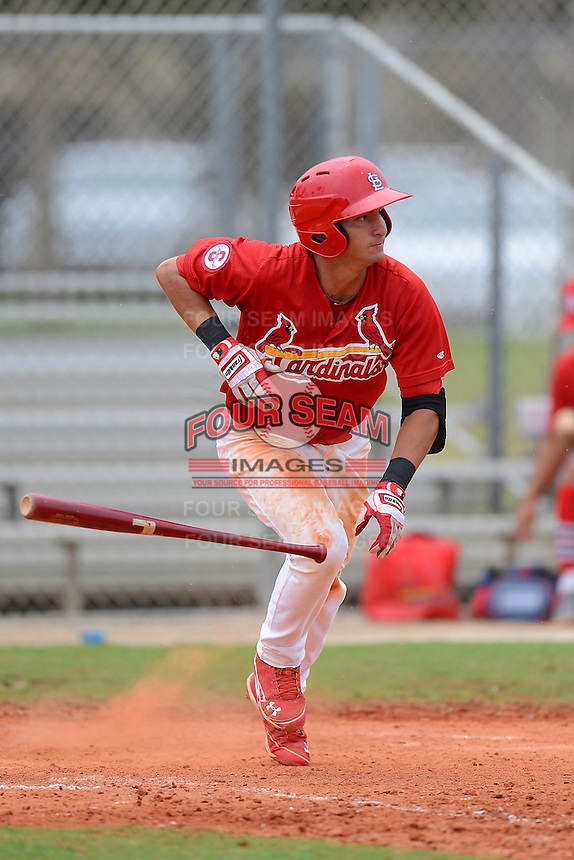 GCL Cardinals outfielder Jhohan Acevedo (15) during the first game of a double header against the GCL Mets on July 17, 2013 at Roger Dean Complex in Jupiter, Florida.  GCL Cardinals defeated the GCL Mets 6-5 in twelve innings.  (Mike Janes/Four Seam Images)