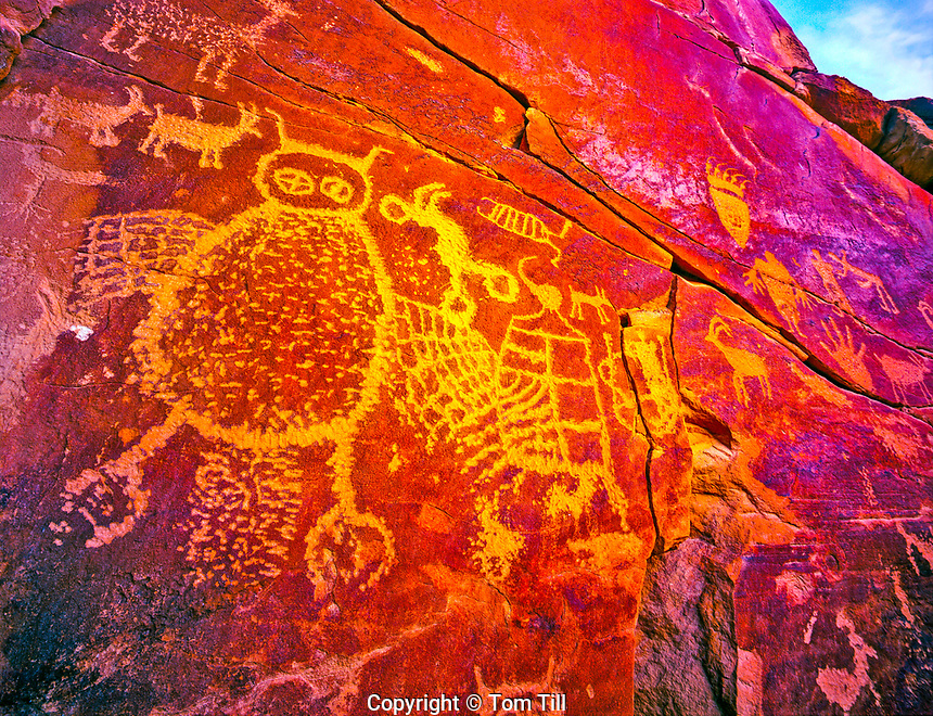Owl Petroglyph Panel, Ancient Ute Culture Rock Art, Nine-MIle Canyon, National Scenic Byway, Utah, Location secret to protect archeaology