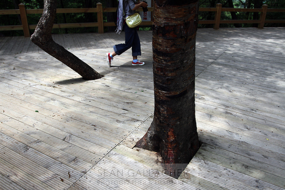 A woman walks across boardwalks in the Jiuzhaigou National Park. Sichuan Province. China.