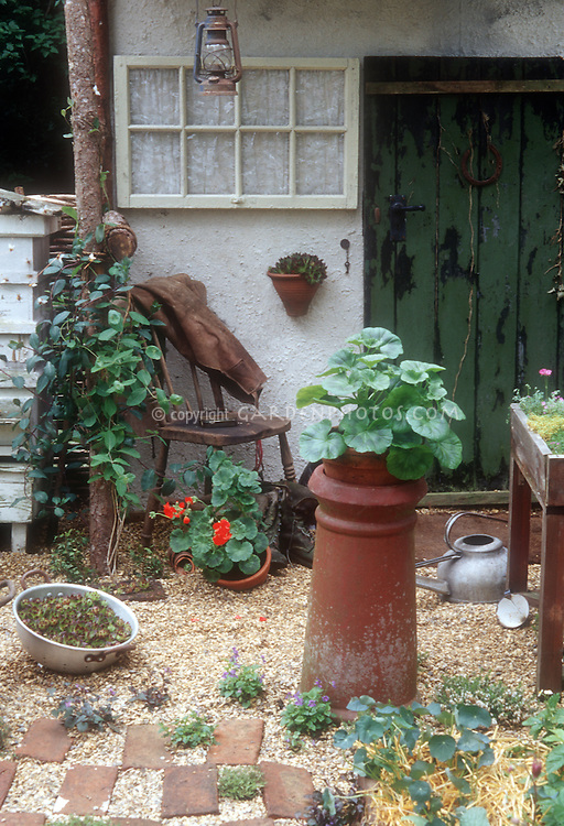 Charming courtyard garden with containers including recycled kitchen colander, chimney pot planters, galvanized antique watering can, old chair, hanging pots, old flea market finds lantern, beehive, bricks & pebble stone mulch with stepping stone plants thymes and violas, nasturtiums in straw, planter table, geraniums, old rustic wood door in house, hanging fake window with curtain, to create adorable scene. Vines, annuals, perennials, flowers and foliage plants together.