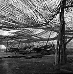 German pursuit planes captured intact at a camouflaged assembly plant. Germany, April 1945