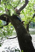 Kinder, Kind, Junge, Mädchen, Geschwister klettern in einem Baum, Baumklettern, Children, child, boy, girl, climb in a tree, tree climbing
