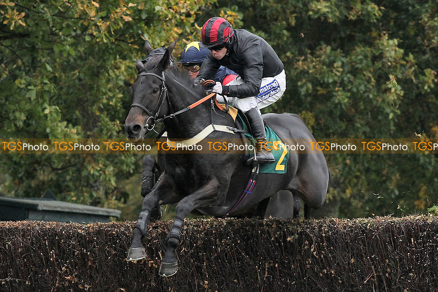 Bai Zhu ridden by Denis O'Regan in jumping action in the Come Racing 26th October Fakenham Handicap Chase - Horse Racing at Fakenham Racecourse, Norfolk - 19/10/12 - MANDATORY CREDIT: Gavin Ellis/TGSPHOTO - Self billing applies where appropriate - 0845 094 6026 - contact@tgsphoto.co.uk - NO UNPAID USE