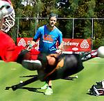 2015 Drijver Goalie Academy