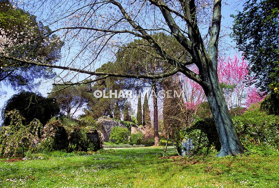 Jardim das Ninfas em Sermoneta, Itália. 1998. Foto de Vinicius Romanini.