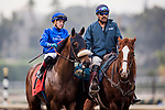 ARCADIA, CA - JANUARY 06: City Plan at the Sham Stakes at Santa Anita Park on January 06, 2018 in Arcadia, California. (Photo by Alex Evers/Eclipse Sportswire/Getty Images)