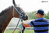 Señor Quickie getting hosed down after winning at Delaware Park on 8/7/14