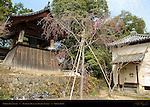 Shoro Bell Tower, Bonsho Temple Bell, Tenryuji Heavenly Dragon Temple, Kyoto, Japan