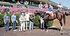 Picko's Pride winning at Delaware Park on 9/27/14