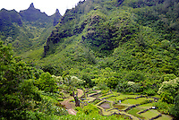 Panoramic scenic view of the sacred 700 year old terraced rock walls and lush Native Hawaiian at Limahuli Gardens, on Kauai's majestic north shore. The spectacular Makana mountain (known as Bali Hai) rise in the background. One of the 5 National Tro