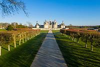 France, Loire-et-Cher (41), Chambord, château de Chambord, la façade sud-est (vue aérienne)