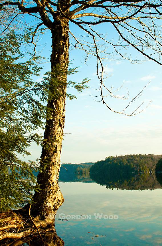 Central Ontario Lake at Sunrise