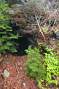 An old mine tunnel on Iron Mountain during the summer months in Jackson, New Hampshire USA. This tunnel is about 50 feet long.