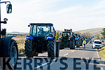 The long line of tractors on their way to Dingle from Lispole old fish farm during the Tractor Run on Sunday afternoon.