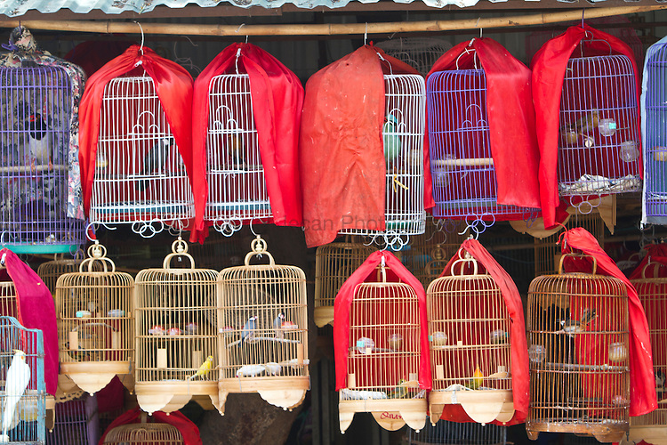 bird cage in Hanoi street market