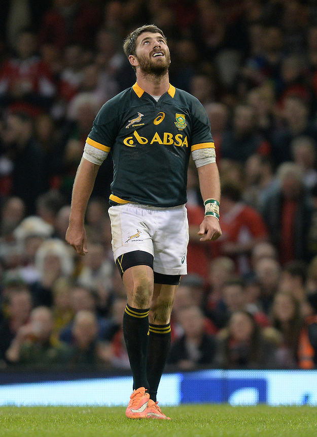 South Africa&rsquo;s Willie le Roux looks the heavens after knocking on in his 22 yard area <br /> <br /> Photographer Ian Cook /CameraSport<br /> <br /> International Rugby Union - Dove Men Series - Wales v South Africa - Saturday 29th November 2014 - Millennium Stadium - Cardiff<br /> <br /> &copy; CameraSport - 43 Linden Ave. Countesthorpe. Leicester. England. LE8 5PG - Tel: +44 (0) 116 277 4147 - admin@camerasport.com - www.camerasport.com