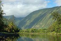 Waipio valley and a Hawaiian Egrit at the waters edge The Big Island of Hawaii, Pacific Ocean