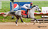 Dhaan winning The Dr. Sam Harrison Juvenile Arabian Filly Stakes (gr 2) at Delaware Park on 8/5/13