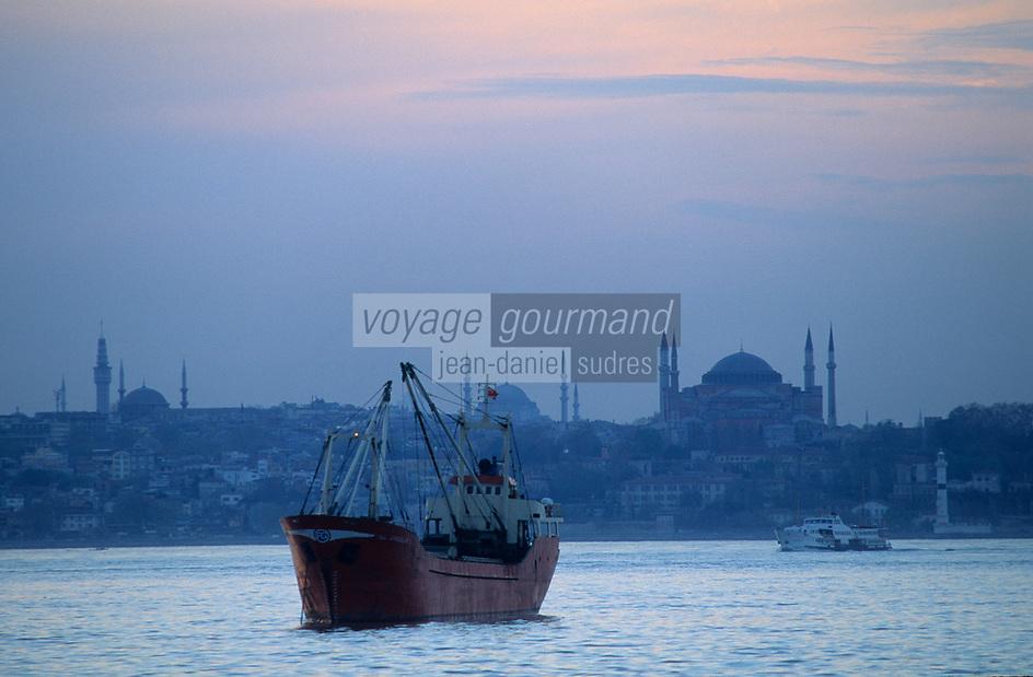 Europe/Turquie/Istanbul : Navigation sur le Bosphore - Basilique Sainte-Sophie et la mosquée Bleue
