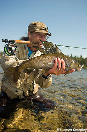 Arctic Grayling fishing