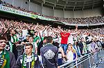 Stockholm 2014-05-24 Fotboll Superettan Hammarby IF - Varbergs BoIS FC  :  <br /> Hammarbys supportrar jublar<br /> (Foto: Kenta J&ouml;nsson) Nyckelord:  Superettan Tele2 Arena HIF Bajen Varberg BoIS jubel gl&auml;dje lycka glad happy
