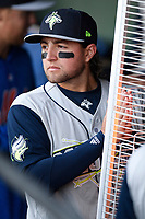 Blake Tiberi (3) of the Columbia Fireflies warms his hands in the dugout with a space heater before an unusually cold game against the Greenville Drive on Monday, April 16, 2018, at Fluor Field at the West End in Greenville, South Carolina. (Tom Priddy/Four Seam Images)