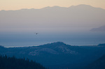 An Osprey (Pandion haliaetus) flies with a fish towards Lake Tahoe at dusk, Sierra Nevada, Eldorado National Forest, California