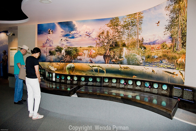 Visitors study the interpretive exhibit at the Royal Palm Visitor Center.