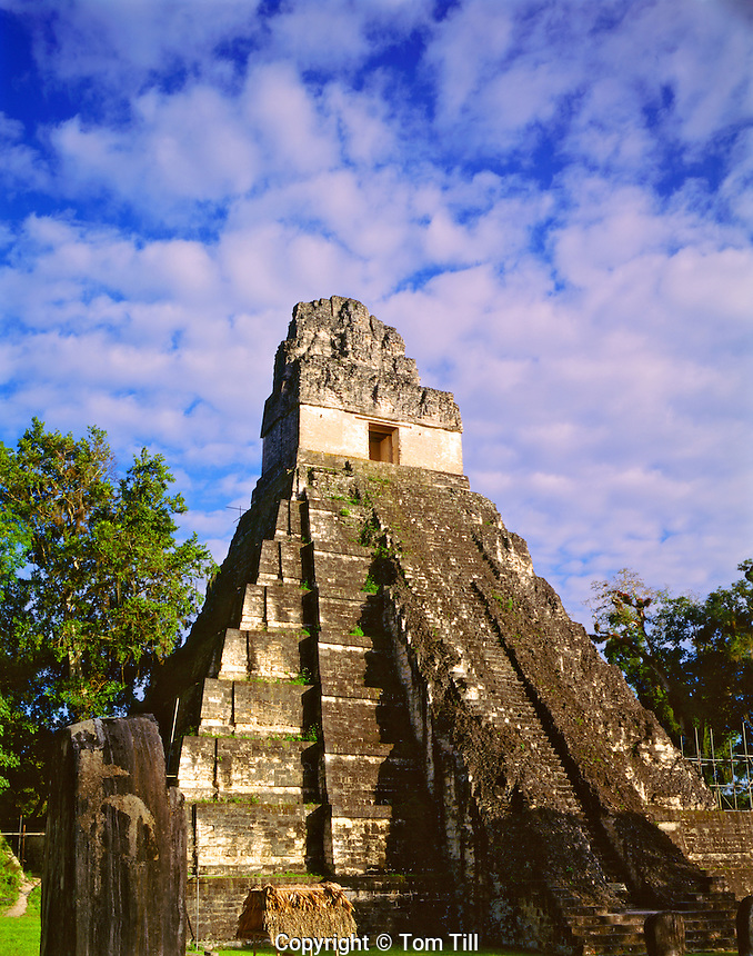 Temple I (Jaguar Temple), Tikal National Park, Peten District, Maya Biosphere Reserve, Guatemala