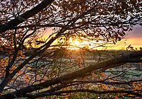 NOV 19 Autumn Sunset