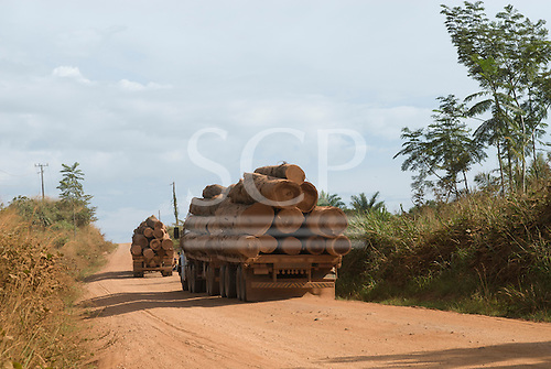 Xingu, Mato Grosso State, Brazil. Logging trucks on the MT322 (BR080) road.