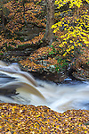 Ricketts Glen State Park, PA: Conestoga Falls on Kitchen Creek in autumn