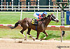 Isolation Road winning at Delaware Park racetrack on 7/7/14