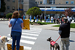 Therapy dog owners from Paws From the Heart parade by Miriam Hospital in Providence, R.I. on Sunday, May 3, 2020 to thank health care workers during the Covid-19 pandemic.